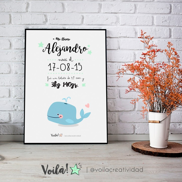 llamina nacimiento ballena azul ALEX voila creatividad
